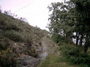 Camino25