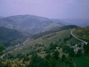 Camino32