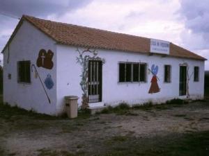 Camino40
