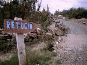 Camino44